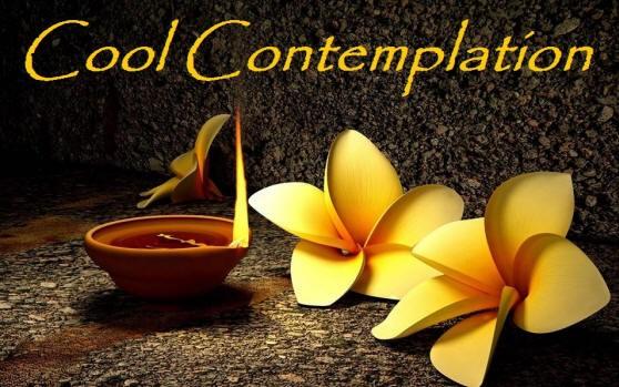 coool contemplation