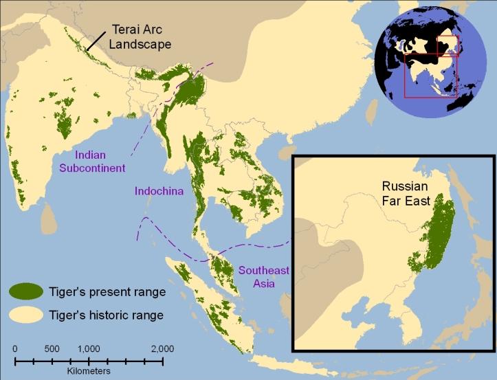 Tiger_map
